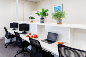 Communal desk space available to hire on a short or long term basis